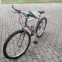 mountain bike telaio acciaio cromato da uomo