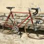 Bici da corsa BATAVUS, modello Monte Carlo