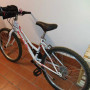 Mountain bike ruota 24