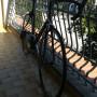 Scapin bici da corsa carbonio