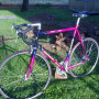 Bici DACCORDI Mitico Costruita 1990 taglia XXL