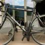 Vendo bicicletta in carbonio marca Zaina