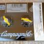 Kit Pulegge ORIGINALI Campagnolo per Gabbia del Cambio 8v