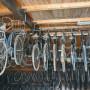 Vendo bici d collezione rarissime
