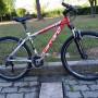 mountain bike ruota 26