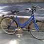 """City Bike 21 velocità,cestino,portapacchi poster.,ottimi freni,ruote 26"""""""