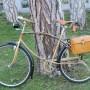 Biciclette rarità XTR carbonio Trussardi collezione d'epoca 30 anni