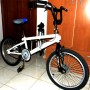 "BMX monomarcia 20"" Monsters"