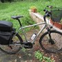 E-bike Kalhkoff
