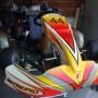 Go kart 100cc telaio Tony Kart motore PCR