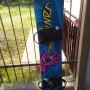 Snowboard santavruz