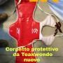 Corpetto teakwondo ufficiale